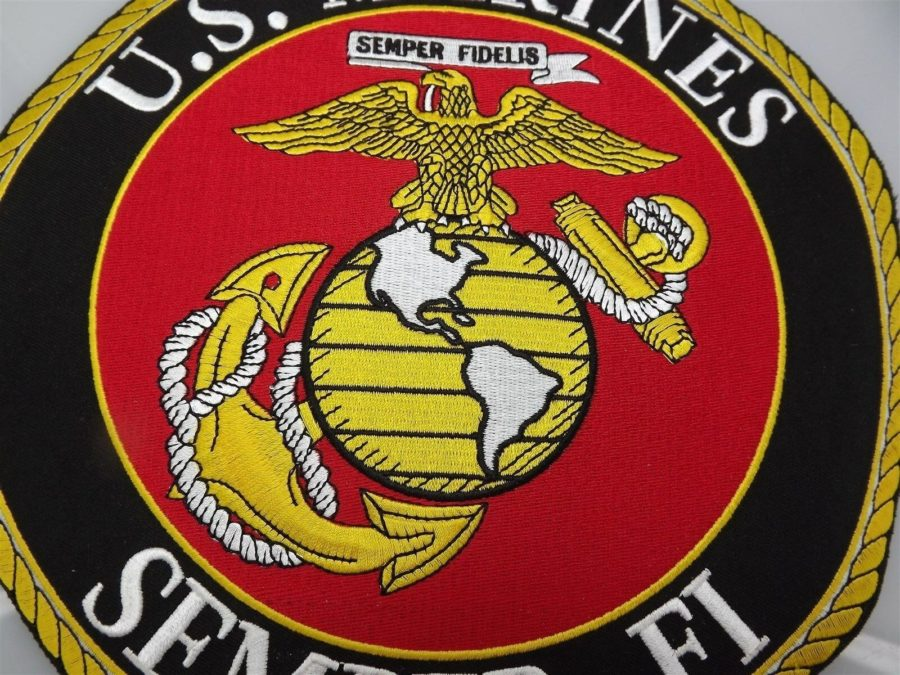 "MARINE CORPS USMC PATCH LARGE LOGO SEMPER FI XLG BRAND NEW 10"" IRON-ON 3"